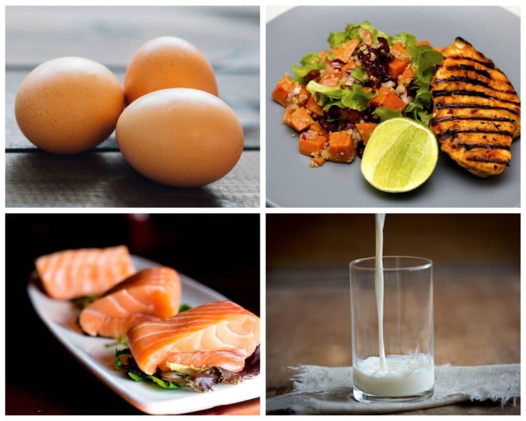 Nutrición deportiva, macronutrientes, proteínas